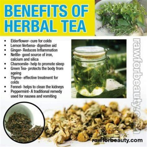 to health with herbal tea drink to a healthier books benefits of herbal tea herbal products remedies
