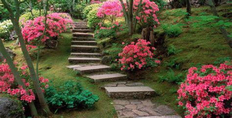 giardino biodinamico cos 232 il giardino biodinamico
