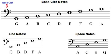 bass clef notes bass clef notes naming lines and spaces how to draw