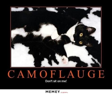 Meme Images Funny - 50 most funny camouflage meme pictures and images