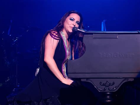 amy lee images amy lee wikipedia