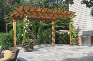 Pergola Climbing Plants by Gallery For Gt Pergola With Vines