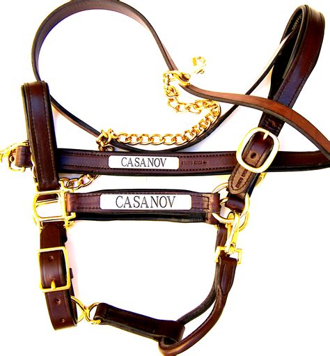 custom leather halters for horses padded leather halters with matching lead shanks nameplates included danzig brothers custom