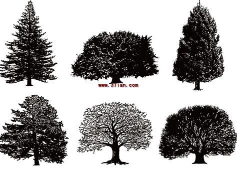 wallpaper pohon hitam putih pohon hitam dan putih vektor tanaman vektor gratis