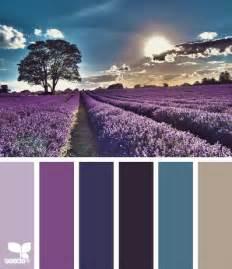 lavender color scheme color design inspiration and lavender fields