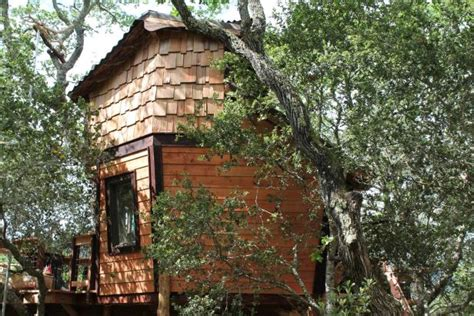 california mid century style treehouse from the treehouse guys photos diy