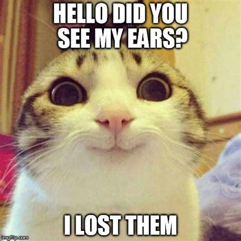 Lost Cat Meme - smiling cat meme imgflip
