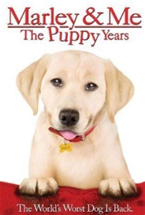 marley me the puppy years marley me the puppy years
