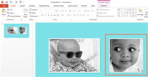 menggunakan format painter  powerpoint  word