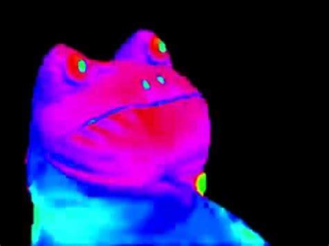 Frog Meme - mlg frog meme youtube
