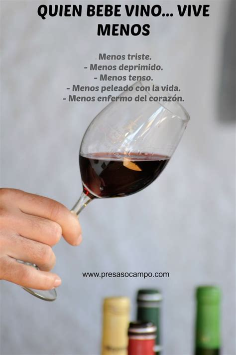 qu vino con este las 25 mejores ideas sobre carteles de vino en y m 225 s decoraci 243 n de vino de cocina