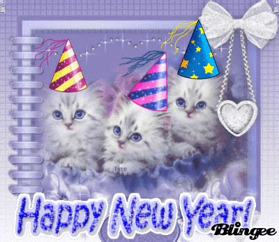 happy new year cats picture 119942868 blingee