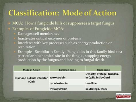 ppt fungicides 101 basics and use in minnesota