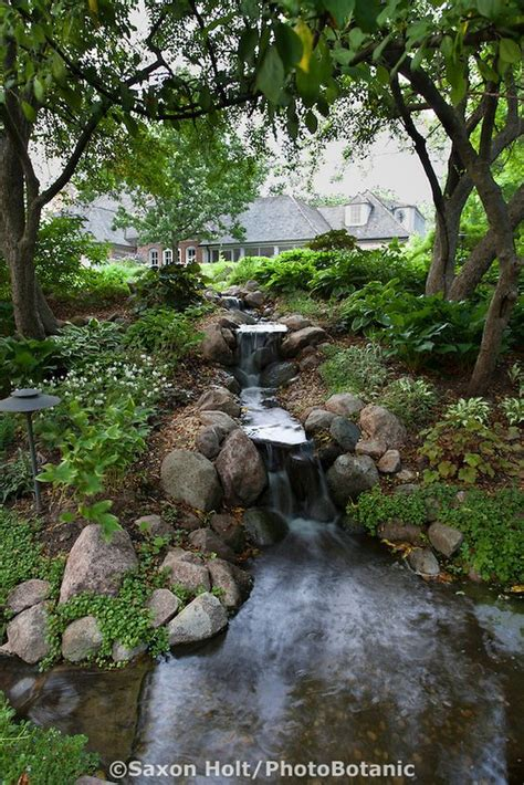 backyard stream ideas pinterest the world s catalog of ideas