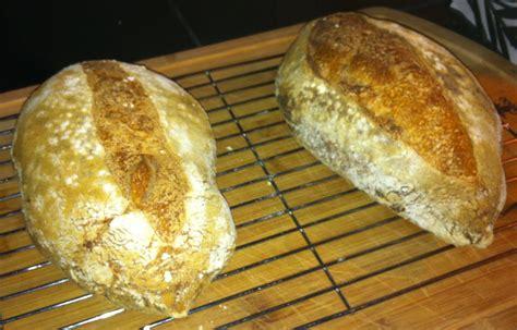 50 hydration dough bba basic sourdough with 50 whole wheat flour the fresh