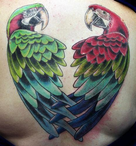 pirate parrot tattoo designs 90 cool parrot tattoos