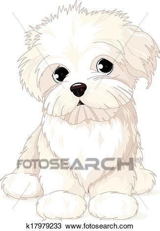 clipart cani clipart maltese cucciolo k17979233 cerca