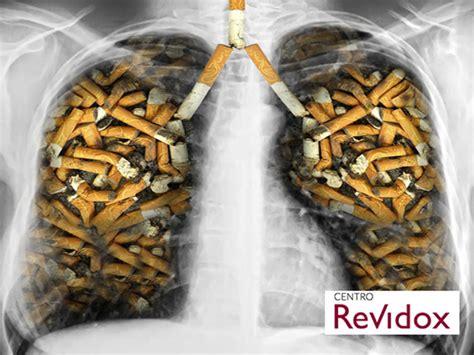 How To Build Rustic Cabinets Imagenes De El Tabaco El Tabaco El Tabaco Y Otras