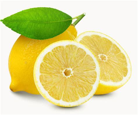 Obat Asam Lambung Lemon manfaat atau bahayakah lemon untuk maag