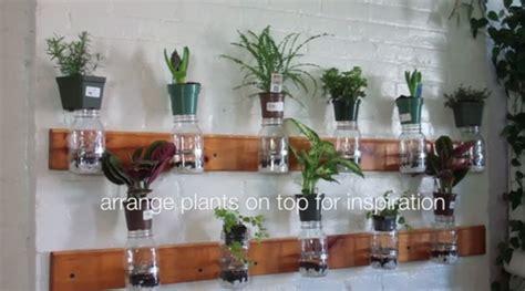 diy mason jar herb garden inhabitat green design