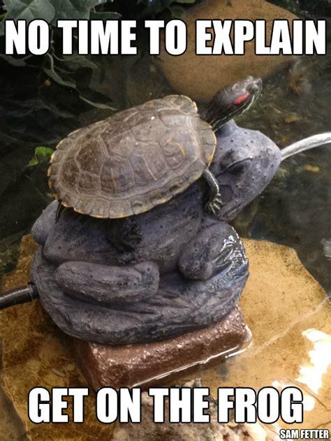 No Time To Explain Meme - no time to explain get on the frog sam fetter turtle on