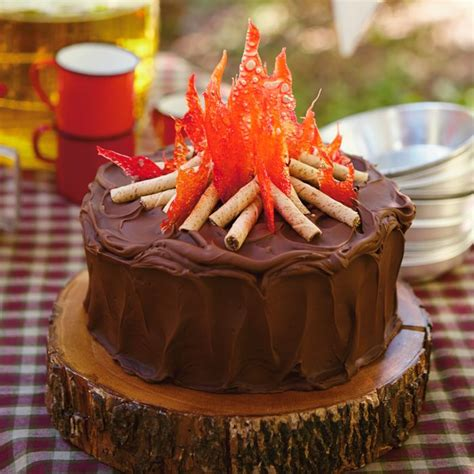 Backyard Movie Night Invitations 25 Best Ideas About Campfire Cake On Pinterest Fire Pit Food Camp Fire Food And Camping Cakes