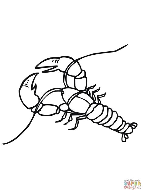 crawfish coloring page coloring home