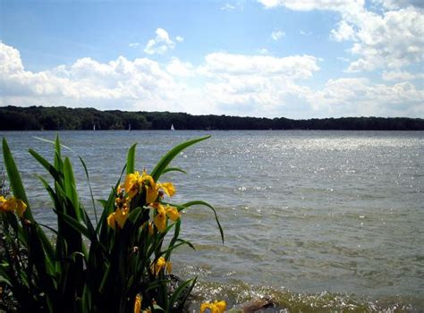 pine mountain lake boating rules cgrounds close to kings island lovetoknow