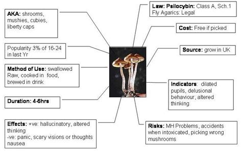 how to grow psilocybin mushrooms practical guide for absolute beginners easy way to grow your own mushrooms books magic mushrooms andys wekly journal