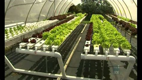 aquaponic integrated farming youtube