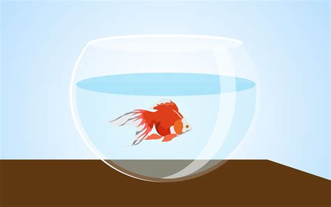 3 ways to fix swimbladder disease in goldfish wikihow