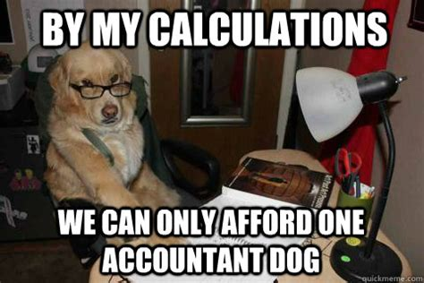 Accountant Dog Meme - by my calculations we can only afford one accountant dog