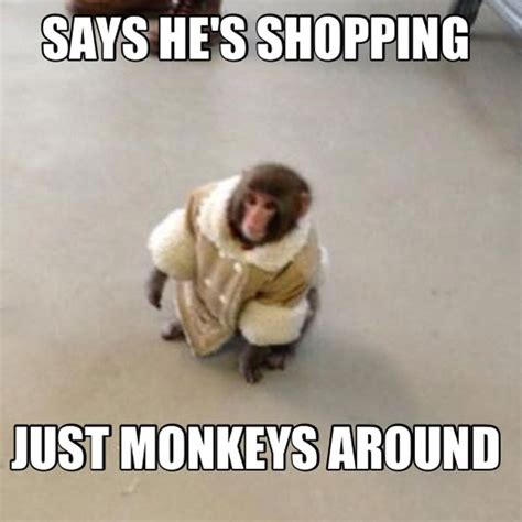 Monkey Meme - the best ikea monkey memes plus video