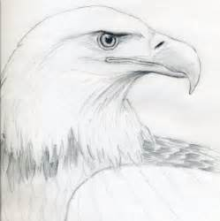 how to draw a bald eagle jus 4 kidz