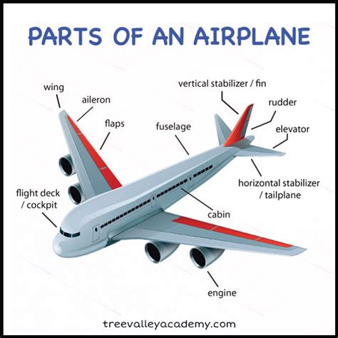 sections of an airplane learning about flight with paper airplanes free