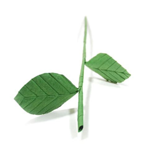 Origami Flower Stem - how to make a hollow origami stem page 1