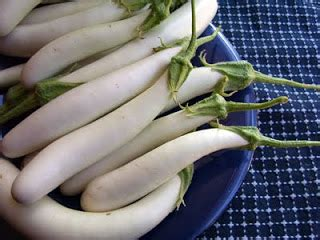 Terong Putih Bulat White Eggplant by Do Really With Phallic Vegetables