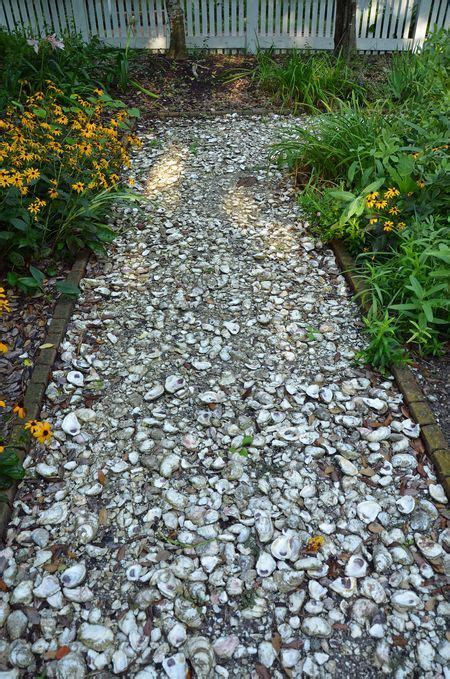 crushed oyster shell path maryland d c life pinterest