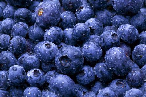 alimenti ricchi di fitoestrogeni ecco gli alimenti accelerano il metabolismo ricette di