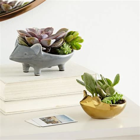 animal planters ceramic animal planters west elm