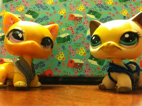 best lps lps popular for sophiegtv and my lps images my lps cats