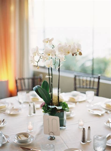 orchid centerpieces for dining table potted orchids reception centerpiece receptions wedding