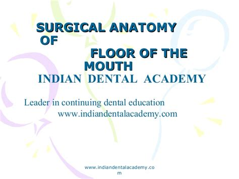 anatomy of the tongue slideshare surgical anatomy of floor of mouth certified