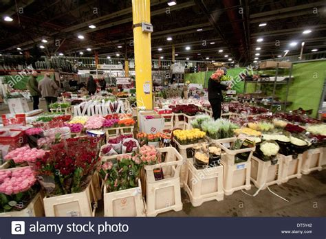 Garden State Flower Market Uk 10th February 2014 Wholesale Market Vendors Sell Flowers Stock Photo Royalty Free