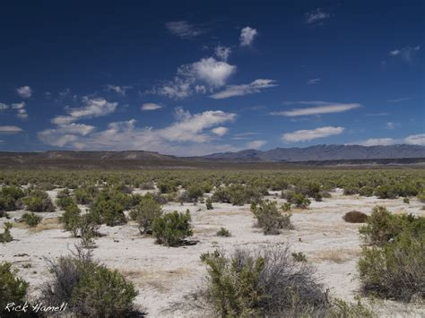 Nv Search Nevada Desert Images Search