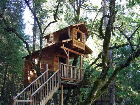 Backyard Treehouse For by How To Build A Treehouse In The Backyard