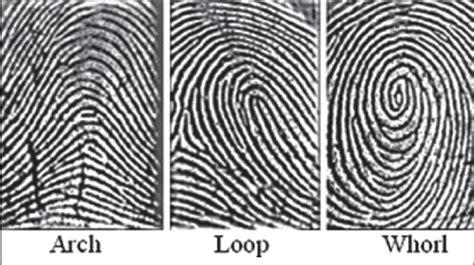 Desain Print Lop   fingerprints loop
