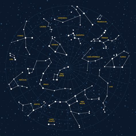 word constellations books constellations amelia s amazing space adventures