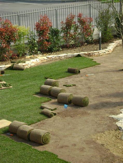tappeto erboso a rotoli posa tappeto erboso a rotoli accogliente casa di cagna