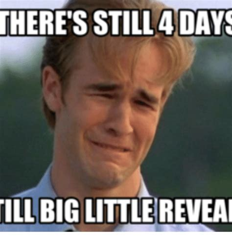 Little Meme - there s still adays ill big little reveai big little